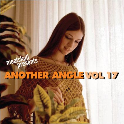 AA_17-cover