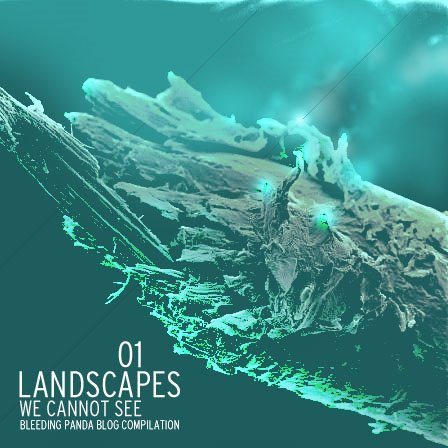 Landscapes+We+Cannot+See+Cover