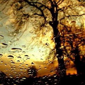 rain_window